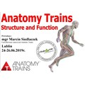 Anatomy Trains STRUCTURE AND FUNCTION